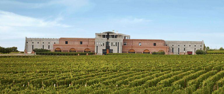 Roteiro que visita 11 vinícolas argentinas, tem data de saída agendada