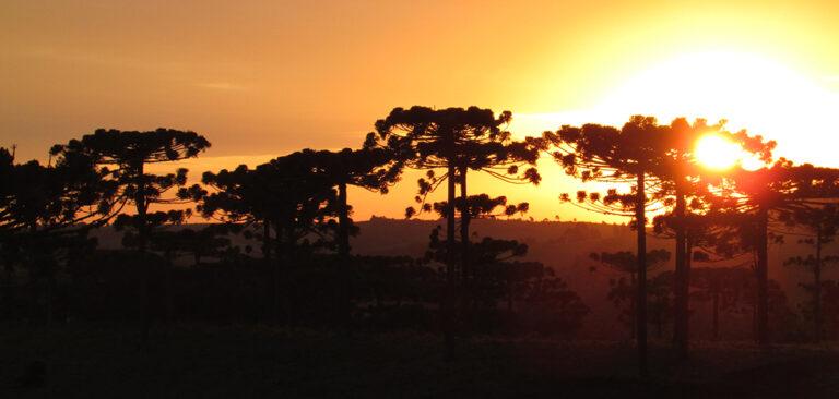 Oeste catarinense, um roteiro para Você descobrir e se encontrar
