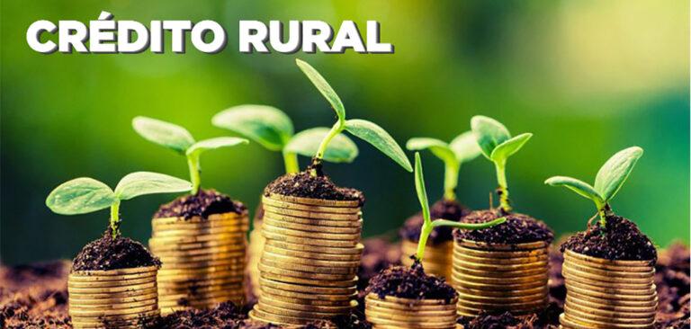 Produtor rural tem recursos disponíveis  para Pronaf e Pronampe, informa FAESC