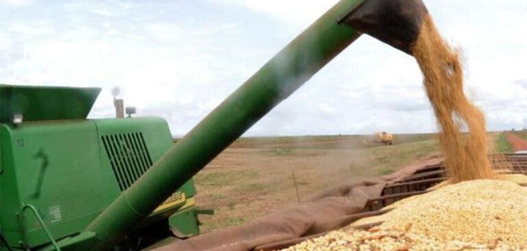 Brasil será maior exportador de grãos do mundo em cinco anos
