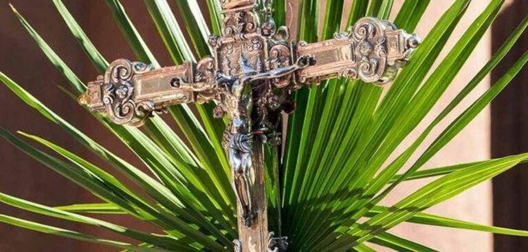 Diocese de Joaçaba celebra Domingo de Ramos