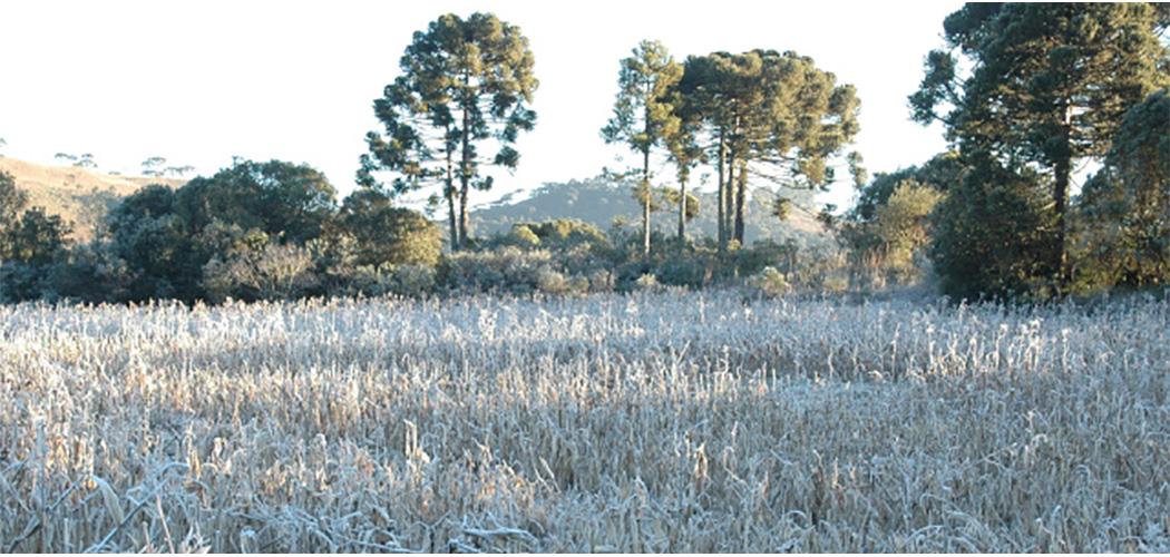 Frio chega mais cedo em Santa Catarina este ano
