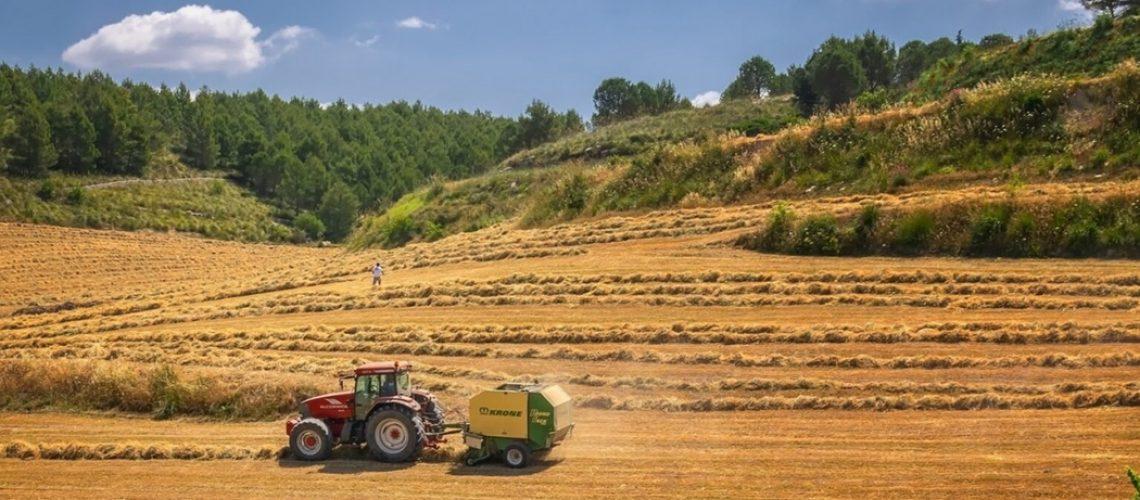 A safra 2020/2021 de grãos inicia em setembro/Foto: Internet