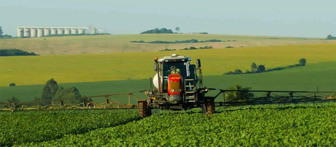 As projeções da Companhia indicam uma elevação de 13,4% da área a ser plantada na safra 2021/22
