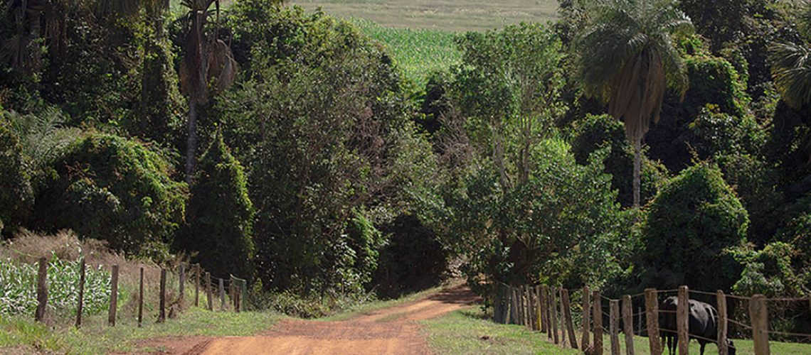 SC tem 335,8 mil propriedades rurais cadastradas no CAR