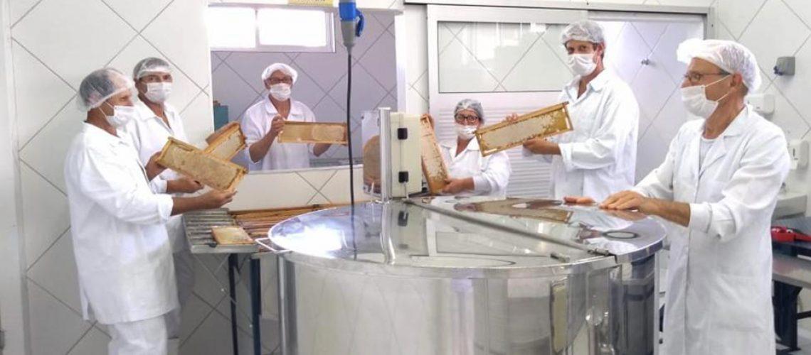 Santa Catarina é um dos maiores produtores e exportadores do Brasil Foto/Arquivo