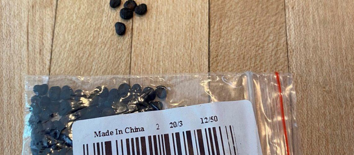 A FAESC pede para que as sementes não sejam plantadas ou descartadas nas propriedades/Foto: Internet