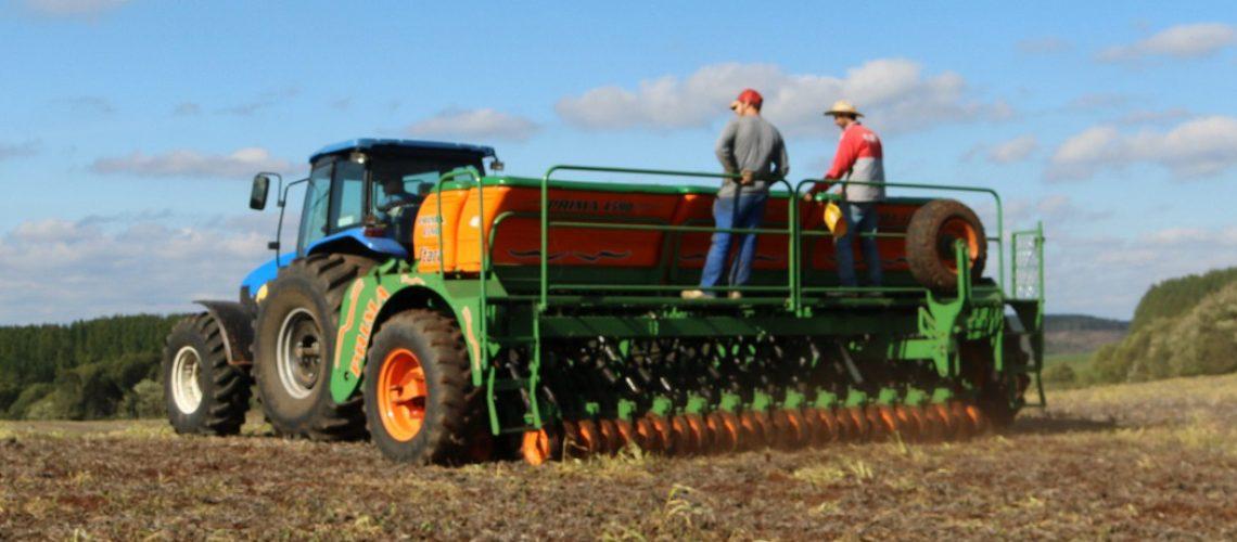Nas lavouras da Coocam, o plantio de milho foi antecipado, iniciando ainda na primeira quinzena de setembro