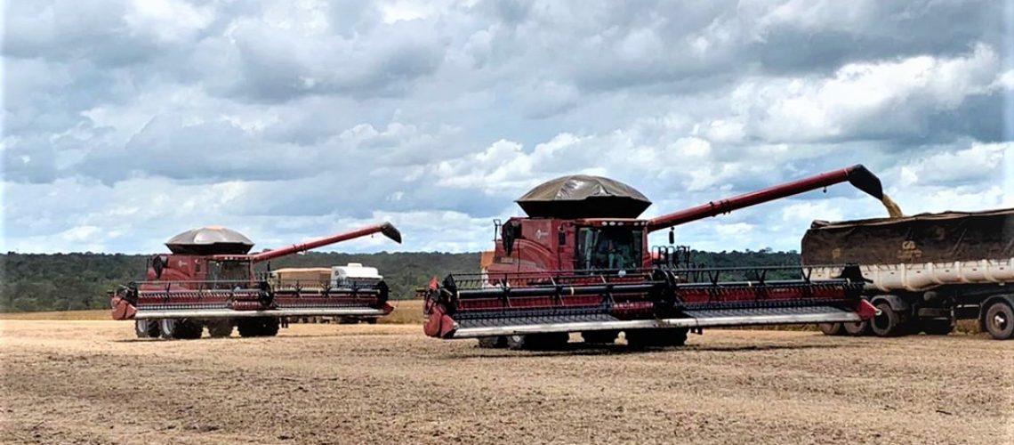No estado do Mato Grosso desde 2014, a Agropecuária Campos Novos (Agrocam) – empresa formada por famílias sócias da Cooperativa Agropecuária Camponovense (Coocam) – começou a colheita da safra 2020/21