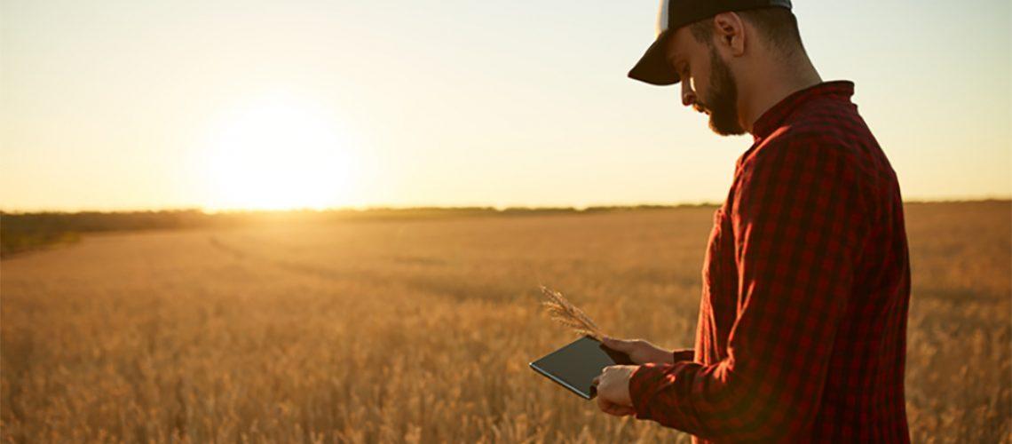 Internet de boa qualidade é uma condição sine qua non para o desenvolvimento das regiões agrícolas/Foto: Internet