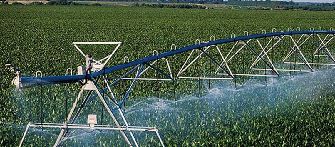 20% das lavouras mundiais são irrigadas/Foto: Internet