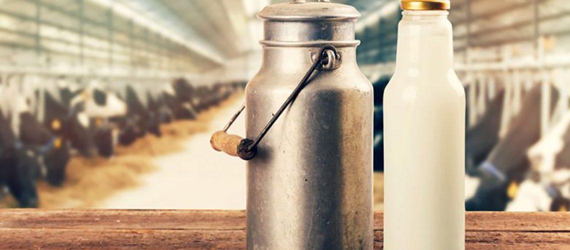 A cadeia produtiva do leite é essencial para a segurança alimentar de qualquer país/Foto: Internet
