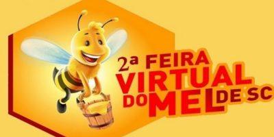 Mel de diversas floradas, mel composto, mel com certificação orgânica e mel de melato de bracatinga