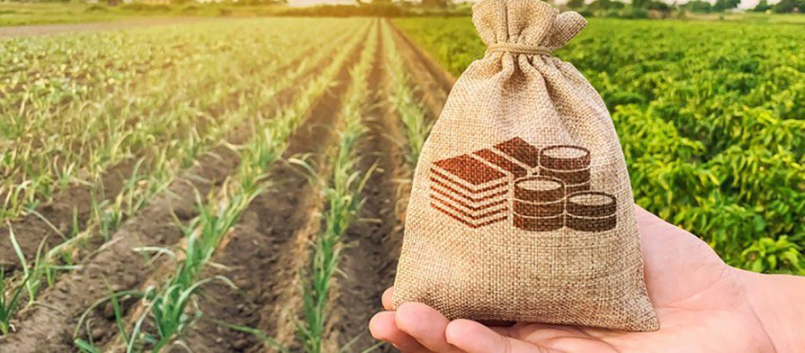 Agro Produção 17 junho Home