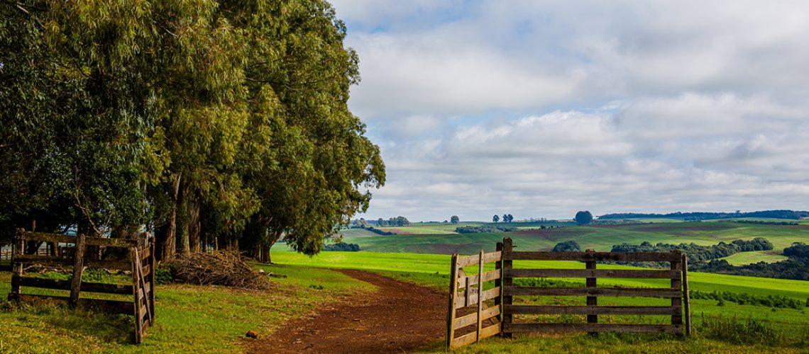 – FAESC quer evitar a supervalorização dos preços das terras e o aumento da carga tributária para os produtores/Foto: Assessoria