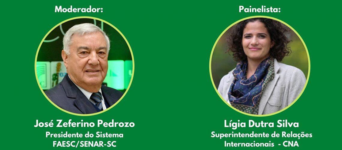 Webinar foi mediada pelo presidente da FAESC, com a participação da superintendente da CNA