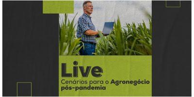 enquanto muitos setores sofrem com os efeitos da crise gerada, a maior parte do setor agrícola do Brasil vem prosperando/Foto: Assessoria