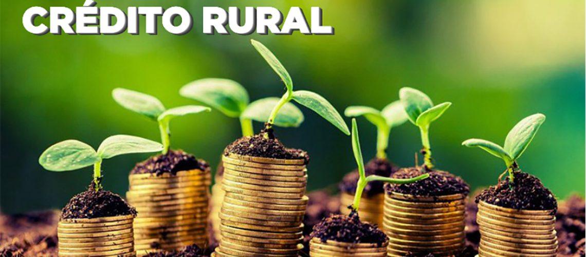 Em Santa Catarina, são 500 mil produtores rurais e 183 mil propriedades, com média de 14 hectares e produção forte em todas as regiões/Foto: Internet