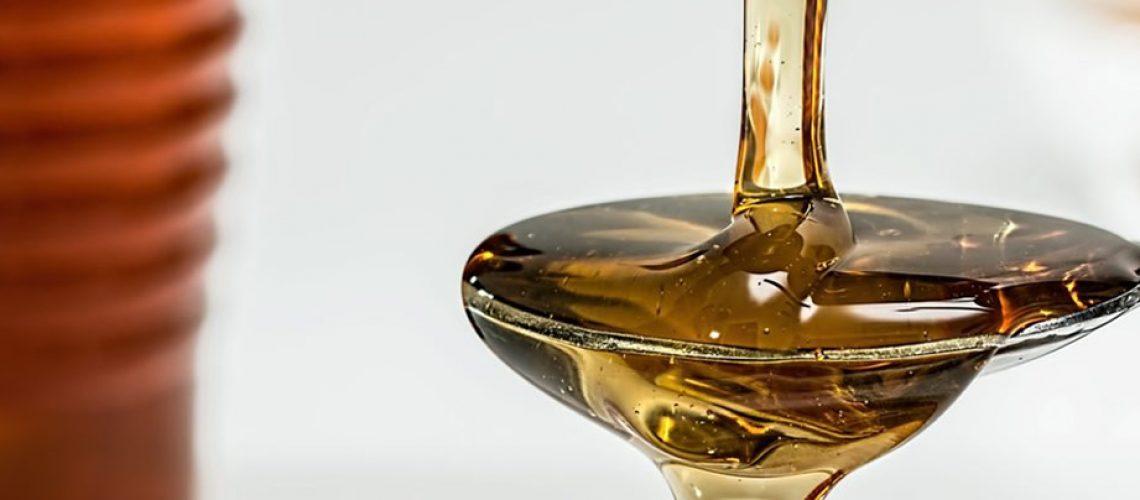 Santa Catarina é o quarto maior produtor de mel do país e conta com quase dez mil apicultores/Foto: Divulgação Internet
