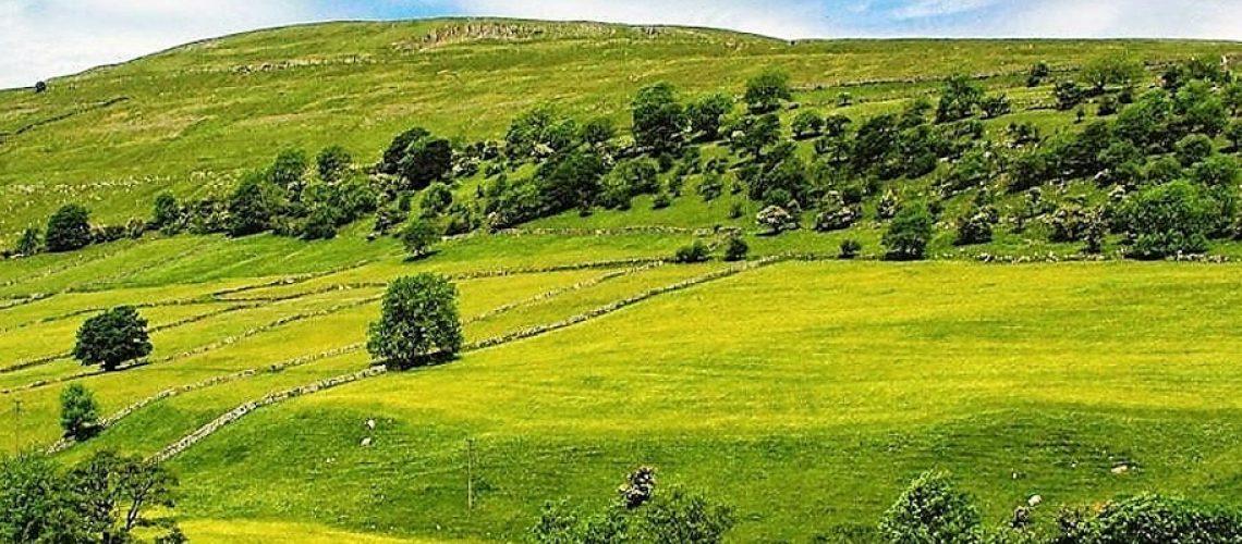 O valor da terra nua entra no cálculo do Imposto que os produtores rurais têm de pagar anualmente/Foto: Divulgação Internet
