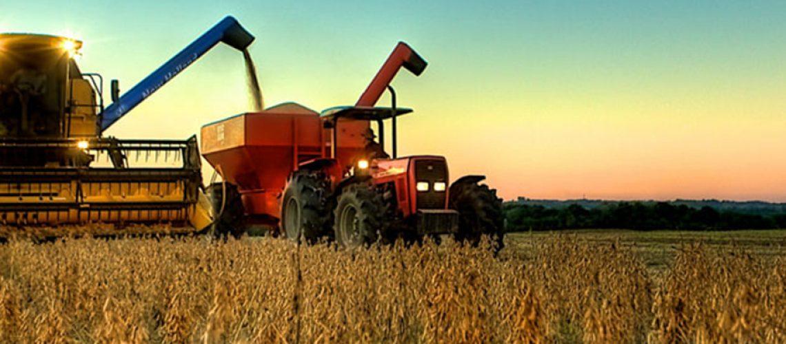 Cepea alertam que devem pressionar o PIB para baixo as agroindústrias que dependem do mercado interno brasileiro/Foto: Divulgação internet
