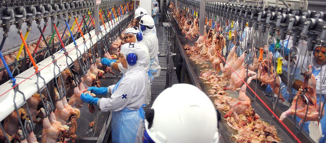 a carne de frango foi a única a registrar evolução positiva de preço/Foto: Internet