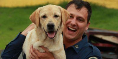 A dupla entre bombeiro militar e cão de busca - formado pelo Soldado Thiago Amorim e a cadela Moana então prontos para atender aos cidadãos