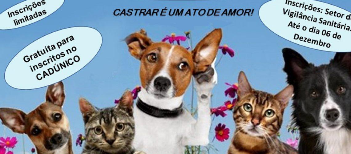 Castrar é um ato de amor/Foto: Assessoria de Imprensa