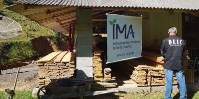 A operação vistoriou seis serrarias onde foram identificados mais de 100 m³ de madeira nativa sem origem confirmada