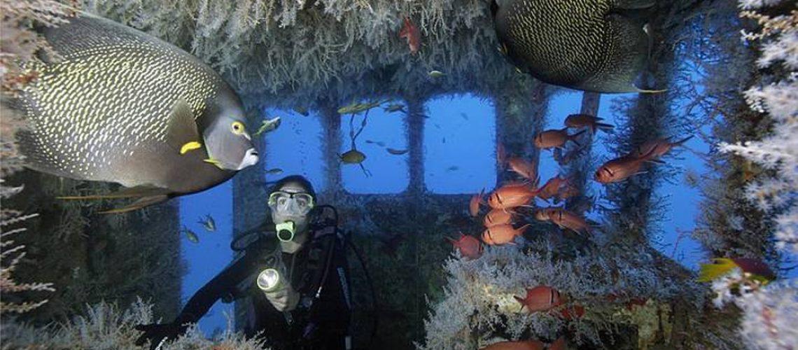 O projeto já identificou a possibilidade da criação de cinco pontos para instalação destes recifes artificiais no litoral/Foto: Internet