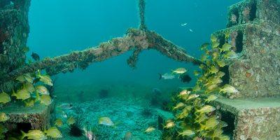 A criação de recifes artificiais no litoral catarinense será uma forma de incentivar o turismo de mergulho/Foto: Internet