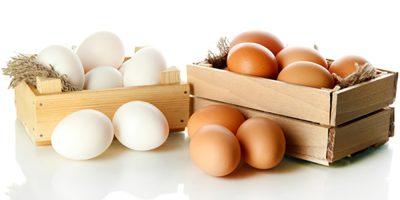 O ovo apresenta uma serie de nutrientes capazes de melhorar o sistema imunológico das pessoas